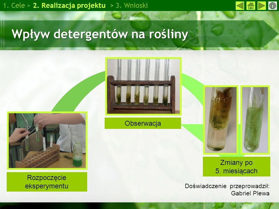 Wpływ detergentów na rośliny