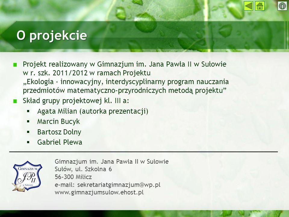 O projekcie