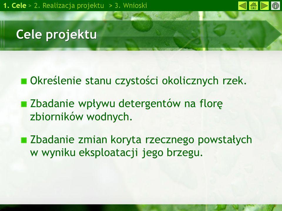 Cele projektu Określenie stanu czystości okolicznych rzek.