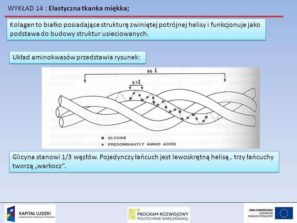 WYKŁAD 14 : Elastyczna tkanka miękka;