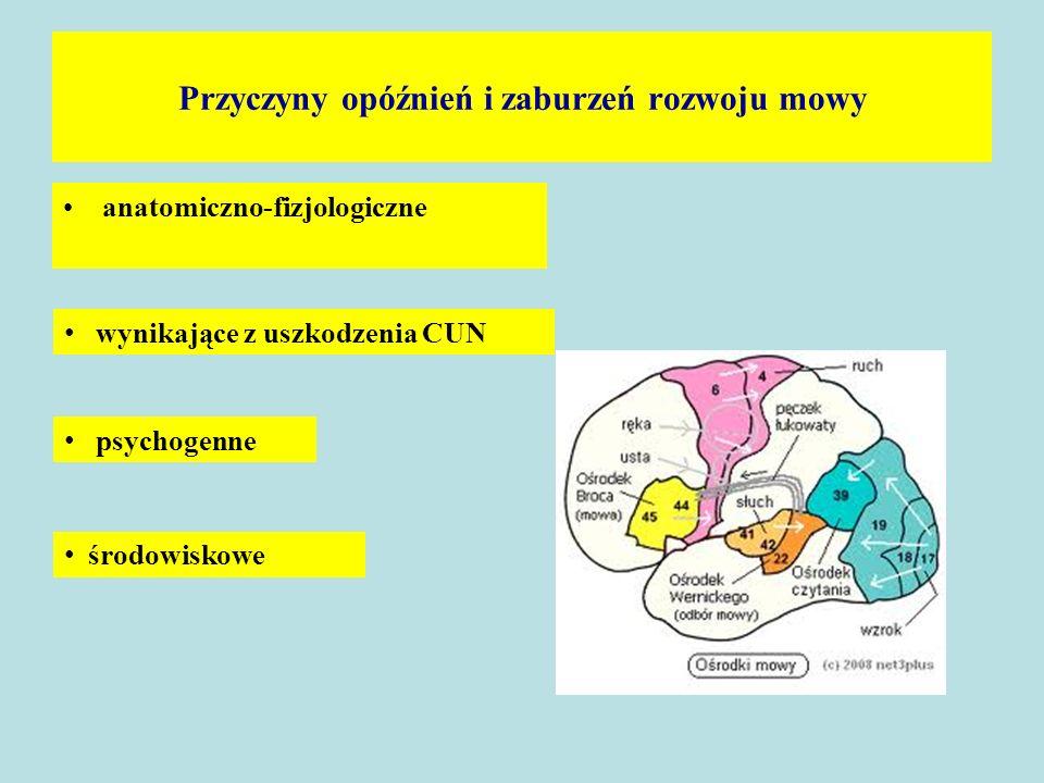 Przyczyny opóźnień i zaburzeń rozwoju mowy