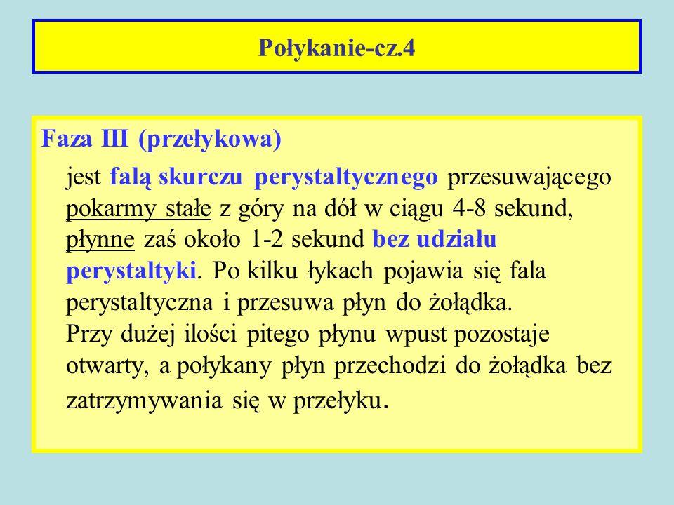 Połykanie-cz.4Faza III (przełykowa)