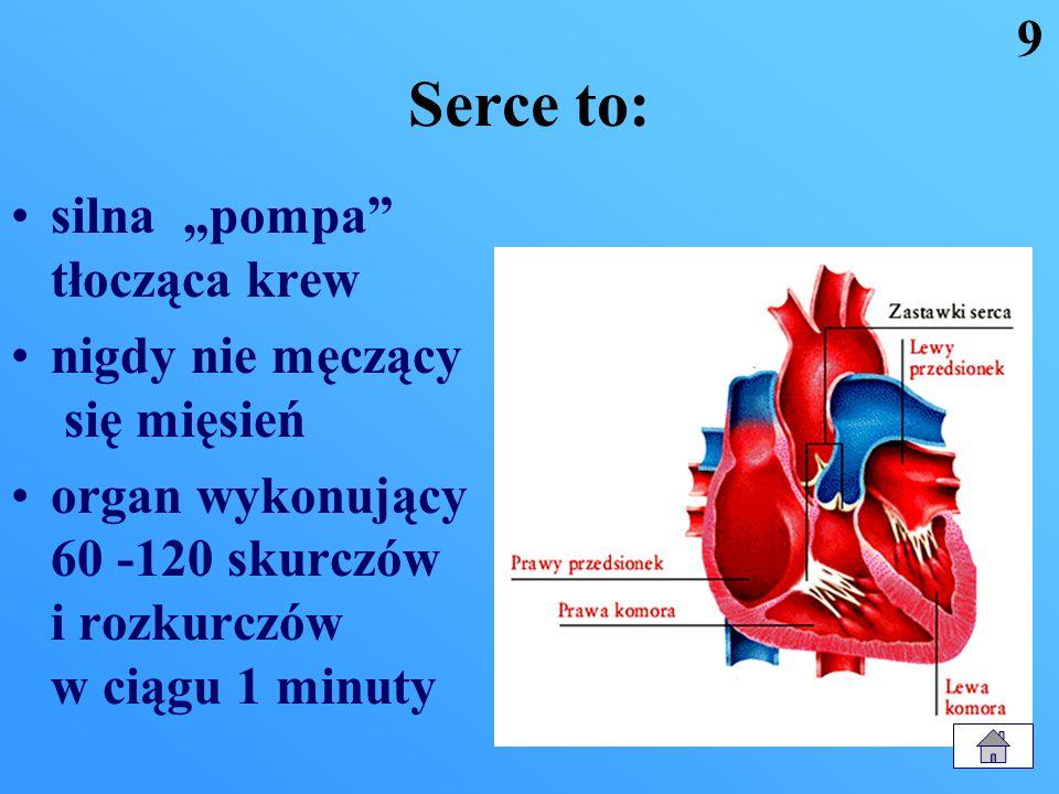"""Serce to: 9 silna """"pompa tłocząca krew nigdy nie męczący się mięsień"""