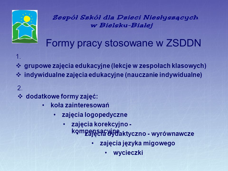 Formy pracy stosowane w ZSDDN