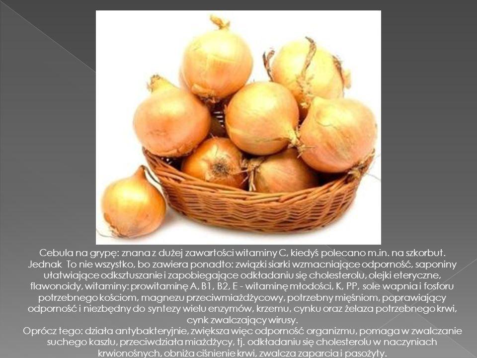 Cebula na grypę: znana z dużej zawartości witaminy C, kiedyś polecano m.in. na szkorbut.