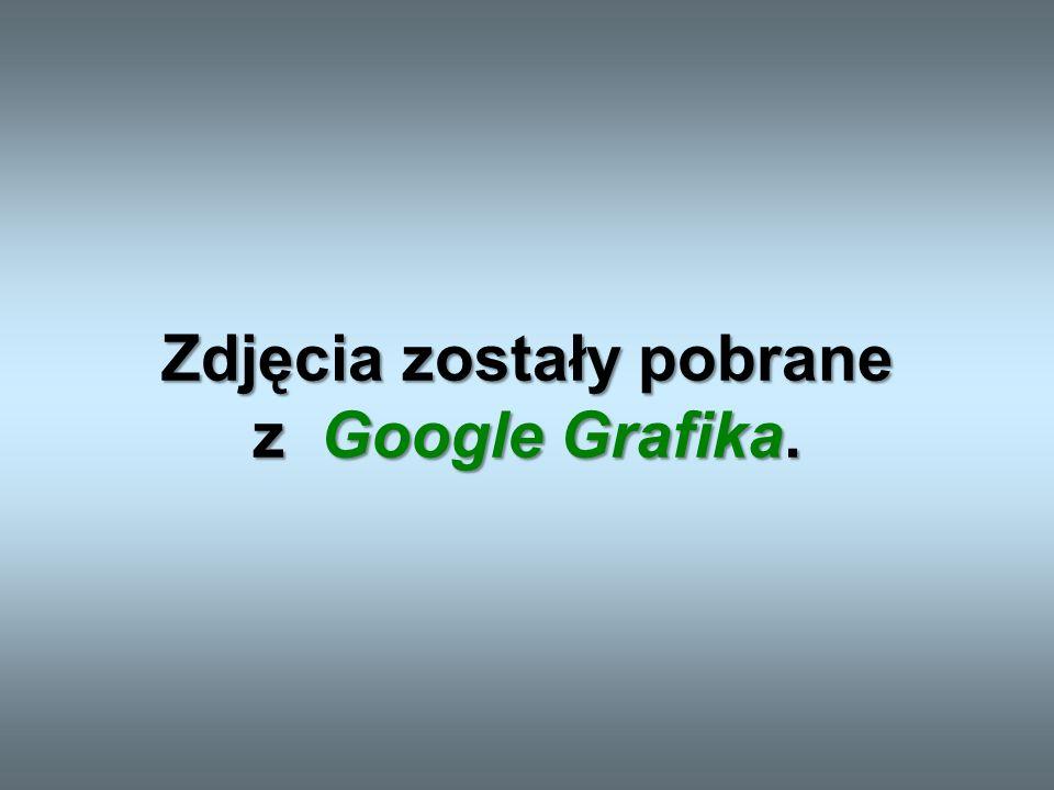 Zdjęcia zostały pobrane z Google Grafika.