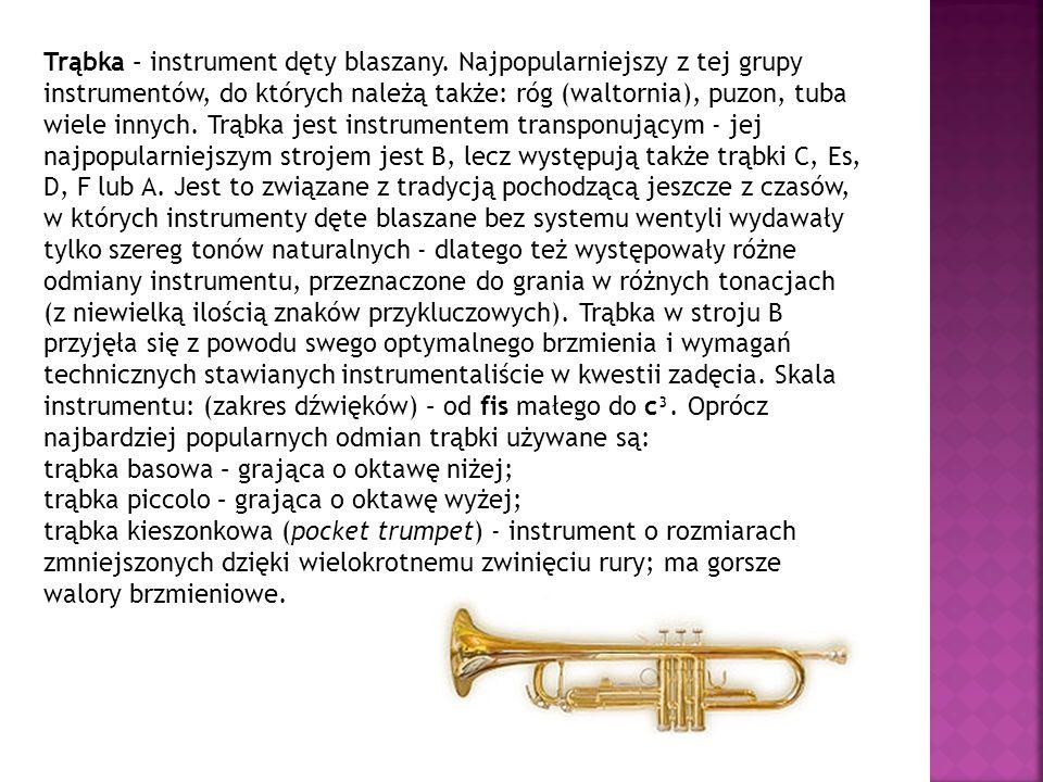 Trąbka – instrument dęty blaszany