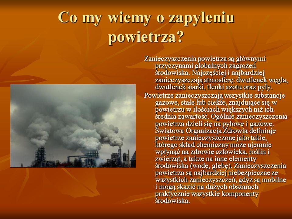 Co my wiemy o zapyleniu powietrza