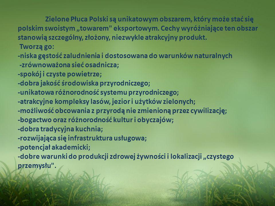 """Zielone Płuca Polski są unikatowym obszarem, który może stać się polskim swoistym """"towarem eksportowym."""