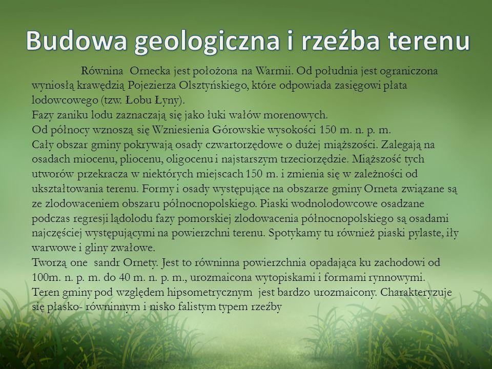 Budowa geologiczna i rzeźba terenu