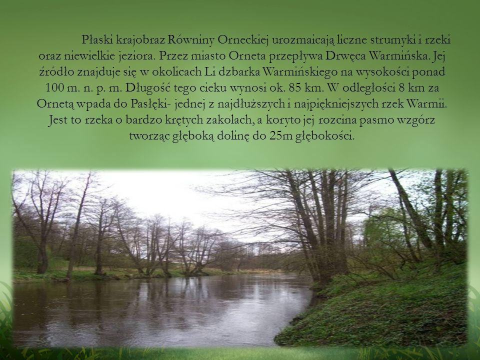 Płaski krajobraz Równiny Orneckiej urozmaicają liczne strumyki i rzeki oraz niewielkie jeziora.