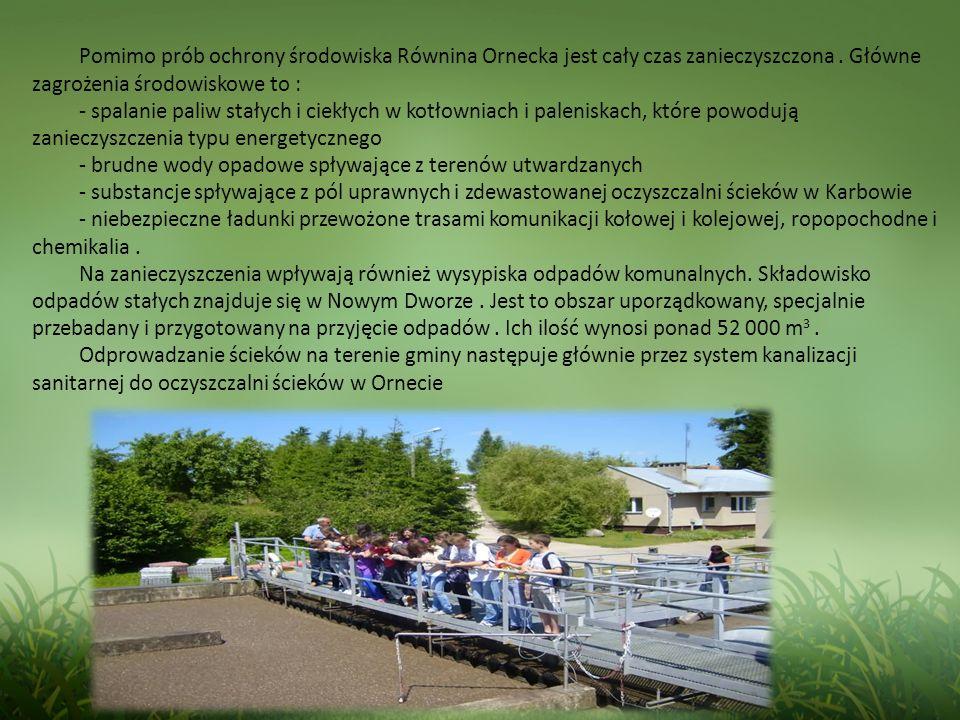 Pomimo prób ochrony środowiska Równina Ornecka jest cały czas zanieczyszczona . Główne zagrożenia środowiskowe to :