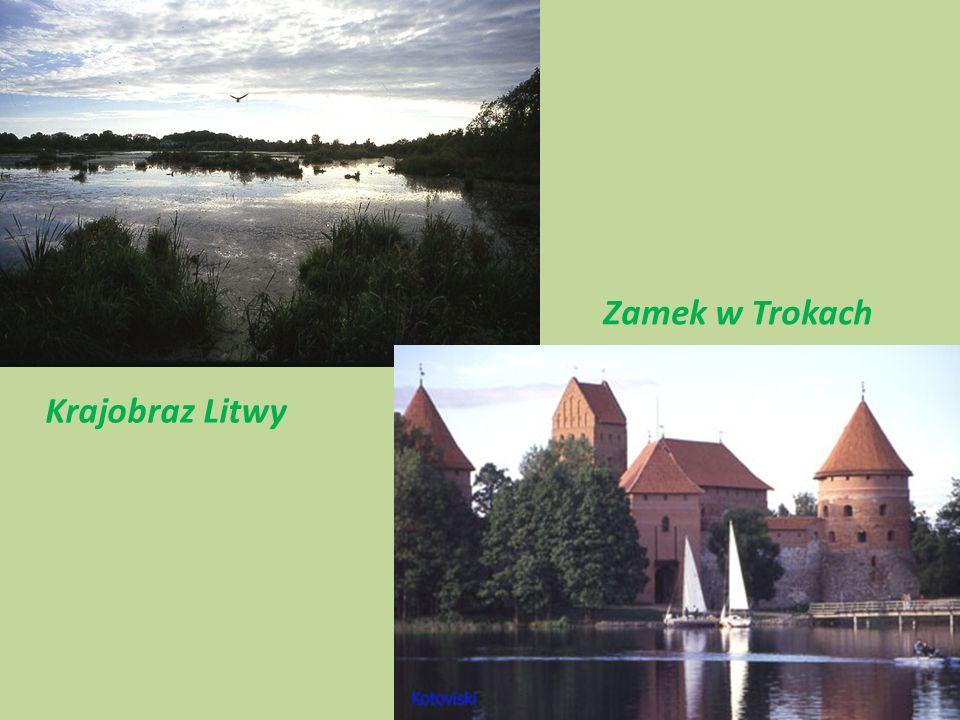 Zamek w Trokach Krajobraz Litwy