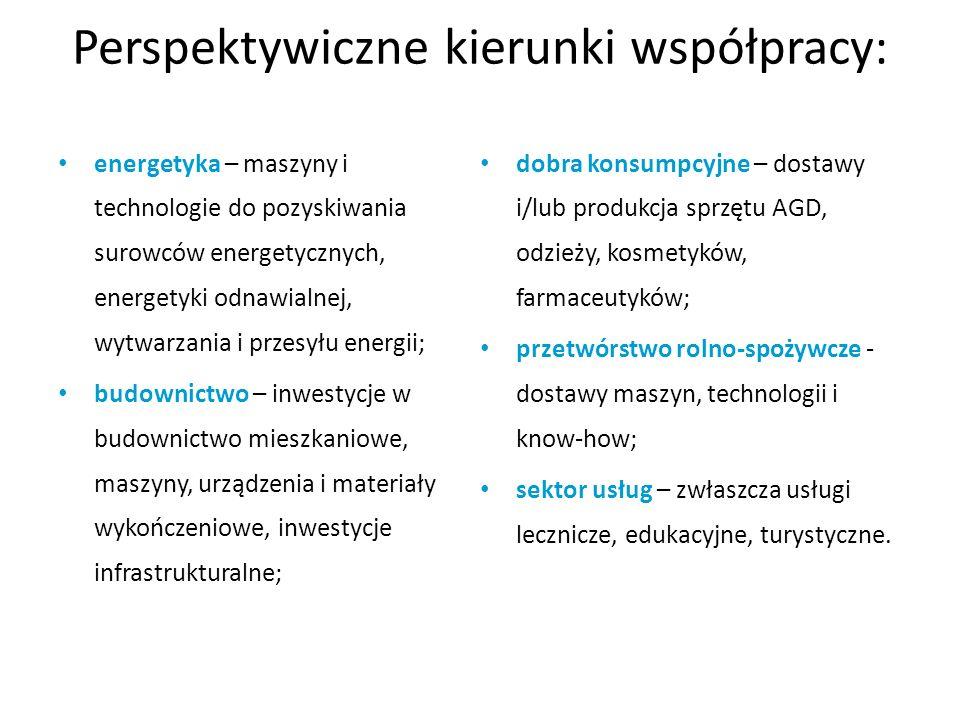 Perspektywiczne kierunki współpracy: