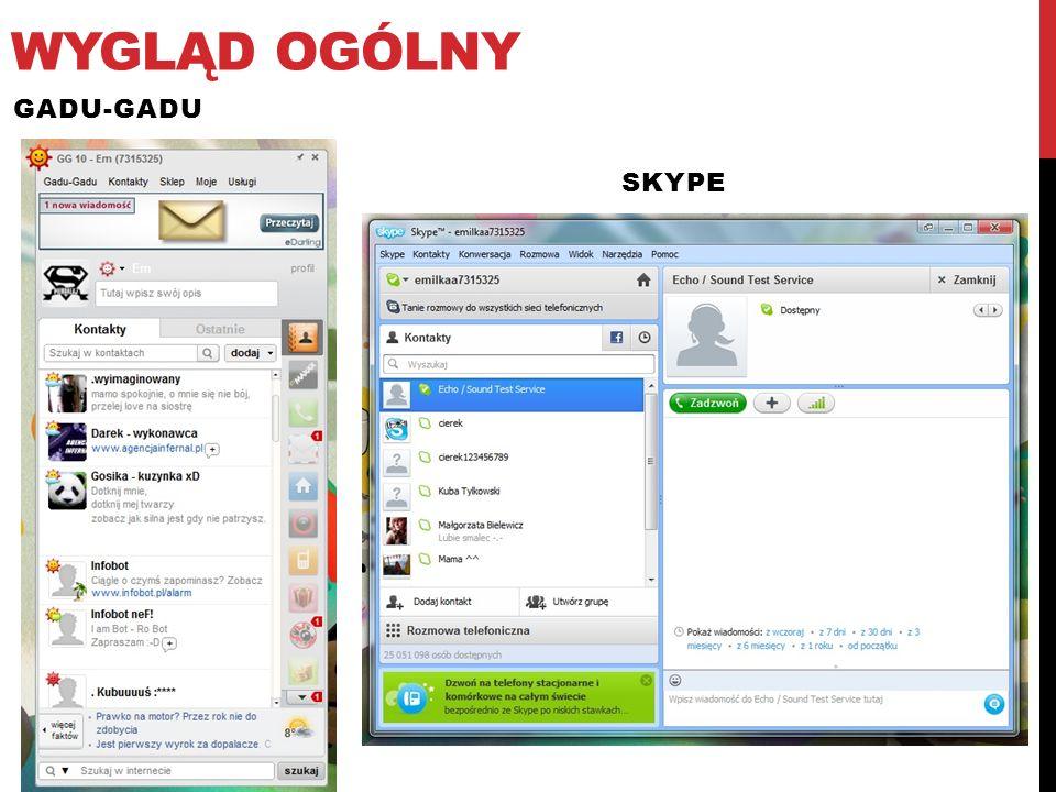 Wygląd ogólny Gadu-gadu skype