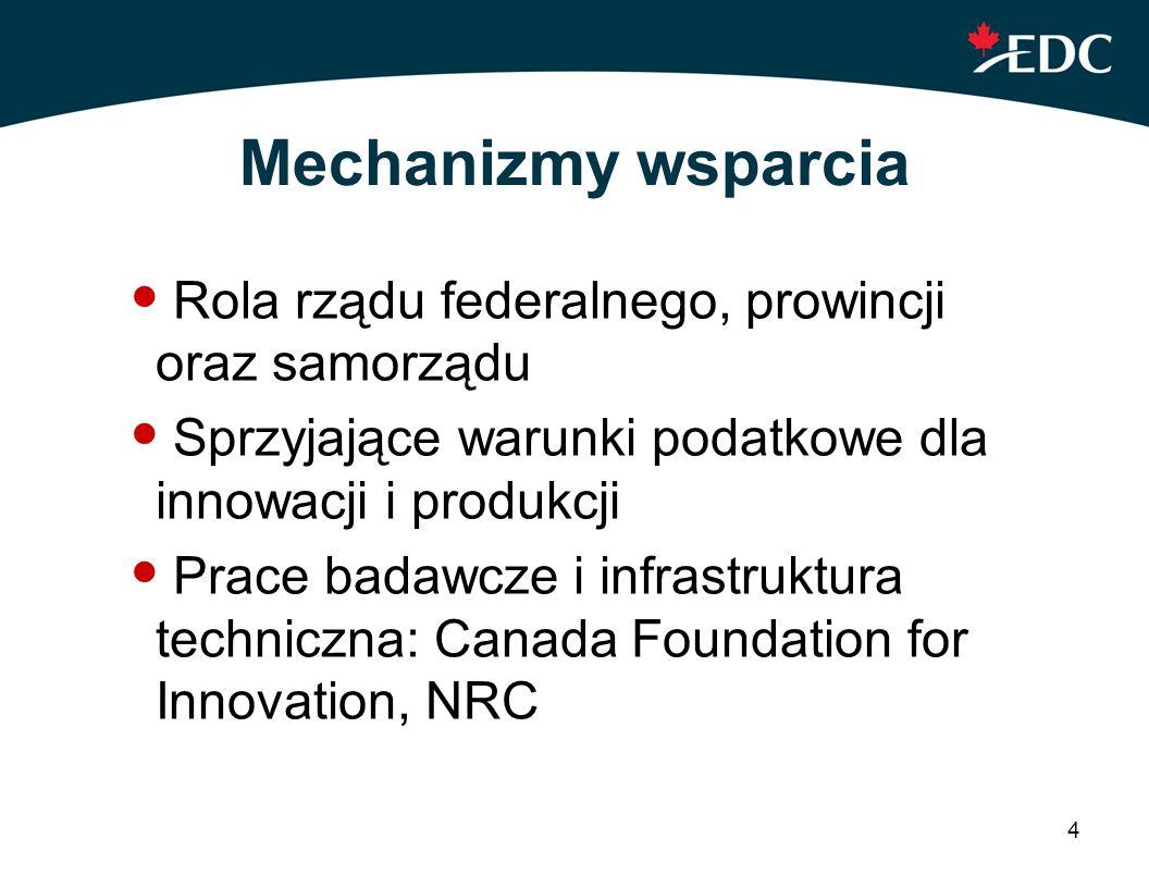 Mechanizmy wsparcia Rola rządu federalnego, prowincji oraz samorządu