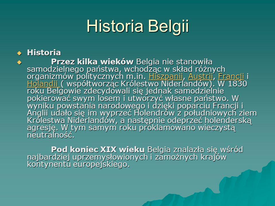 Historia Belgii Historia
