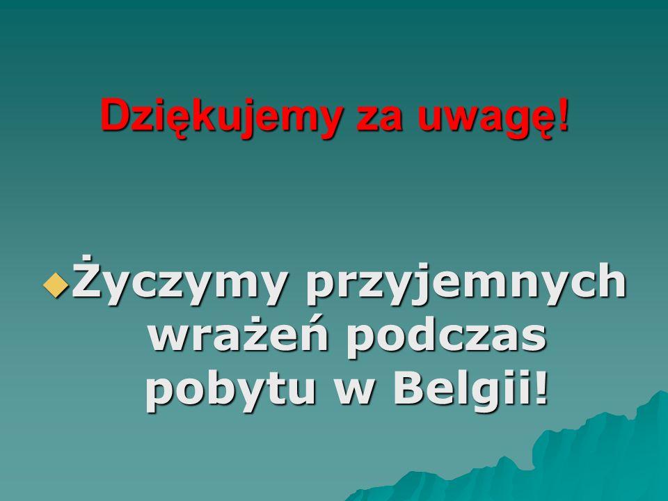 Życzymy przyjemnych wrażeń podczas pobytu w Belgii!