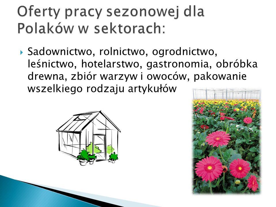 Oferty pracy sezonowej dla Polaków w sektorach: