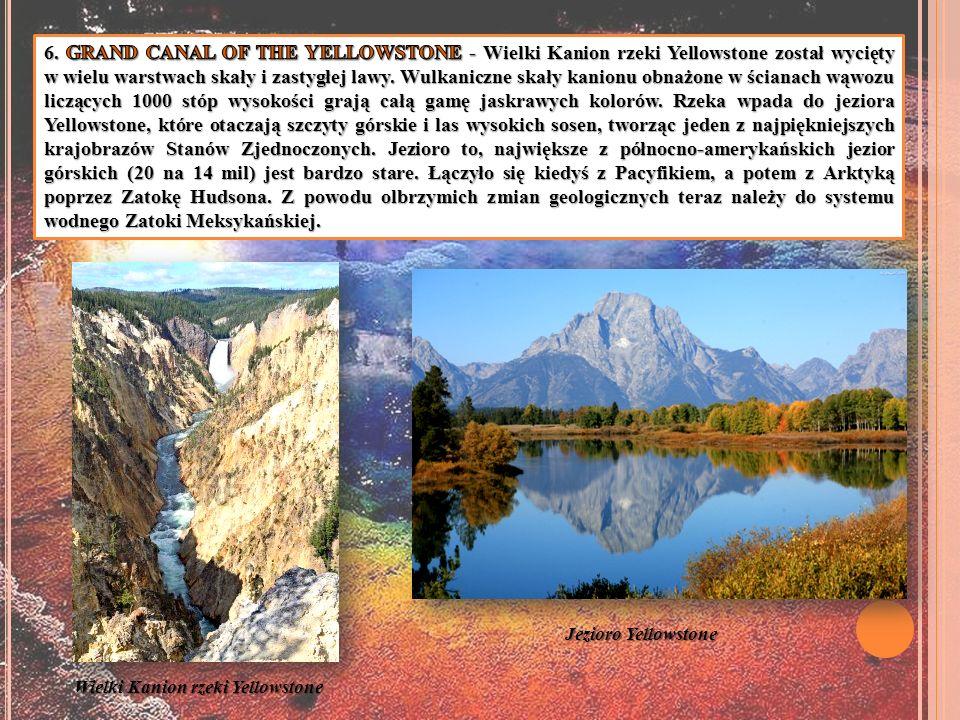 6. GRAND CANAL OF THE YELLOWSTONE - Wielki Kanion rzeki Yellowstone został wycięty w wielu warstwach skały i zastygłej lawy. Wulkaniczne skały kanionu obnażone w ścianach wąwozu liczących 1000 stóp wysokości grają całą gamę jaskrawych kolorów. Rzeka wpada do jeziora Yellowstone, które otaczają szczyty górskie i las wysokich sosen, tworząc jeden z najpiękniejszych krajobrazów Stanów Zjednoczonych. Jezioro to, największe z północno-amerykańskich jezior górskich (20 na 14 mil) jest bardzo stare. Łączyło się kiedyś z Pacyfikiem, a potem z Arktyką poprzez Zatokę Hudsona. Z powodu olbrzymich zmian geologicznych teraz należy do systemu wodnego Zatoki Meksykańskiej.
