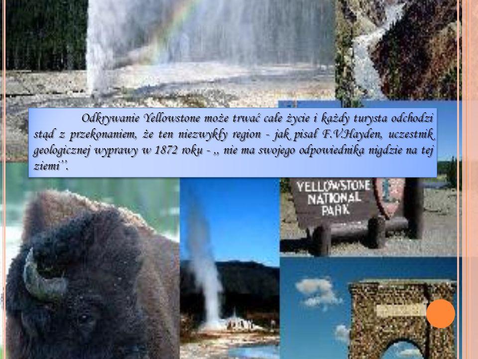 Odkrywanie Yellowstone może trwać całe życie i każdy turysta odchodzi stąd z przekonaniem, że ten niezwykły region - jak pisał F.V.Hayden, uczestnik geologicznej wyprawy w 1872 roku - ,, nie ma swojego odpowiednika nigdzie na tej ziemi''.