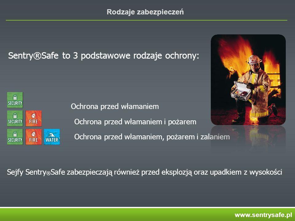 Sentry®Safe to 3 podstawowe rodzaje ochrony: