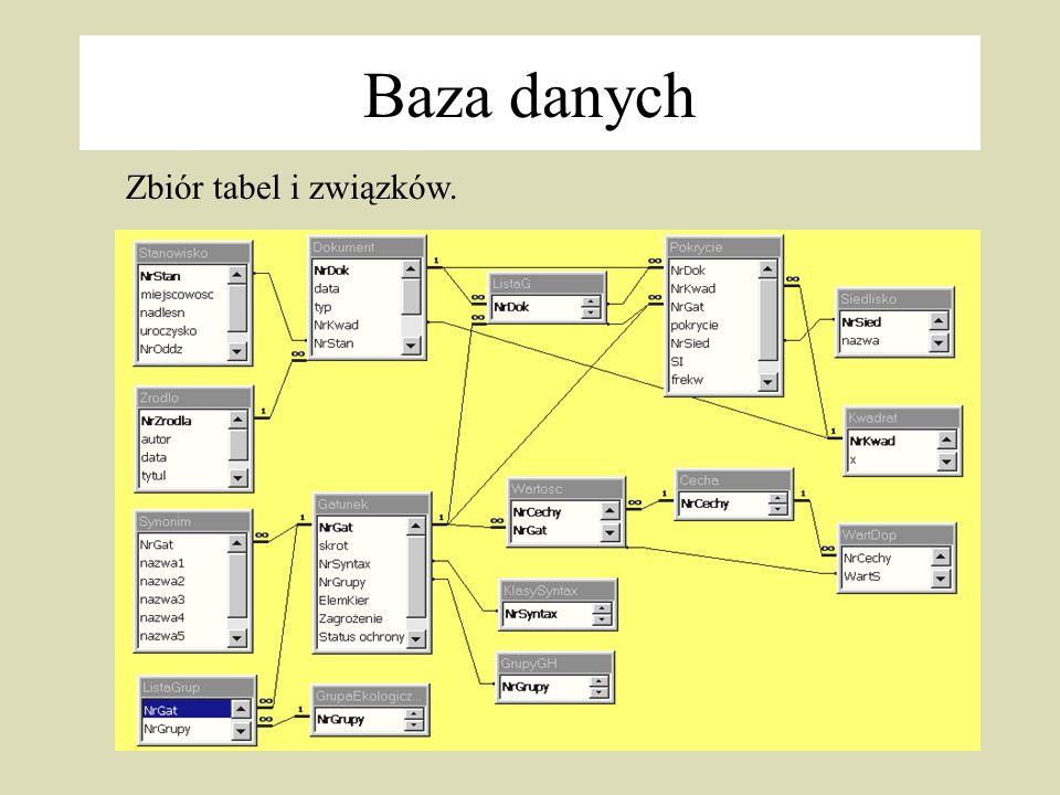 Baza danych Zbiór tabel i związków.