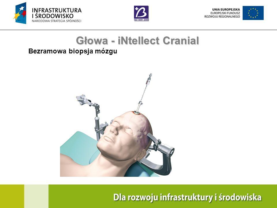 Głowa - iNtellect Cranial