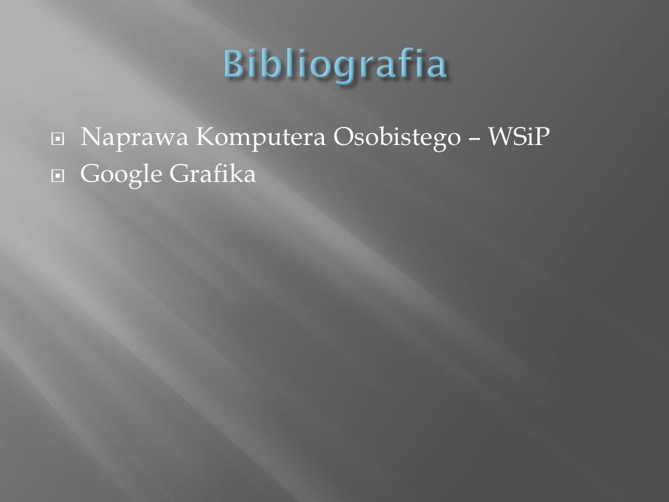 Bibliografia Naprawa Komputera Osobistego – WSiP Google Grafika