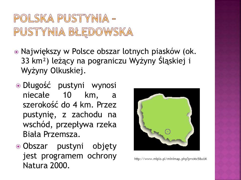 Polska pustynia – Pustynia Błędowska