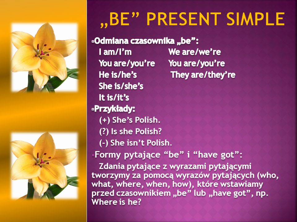 """be present simple Formy pytające be i have got :"