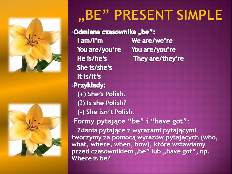 """be present simple Formy pytające be i have got :"