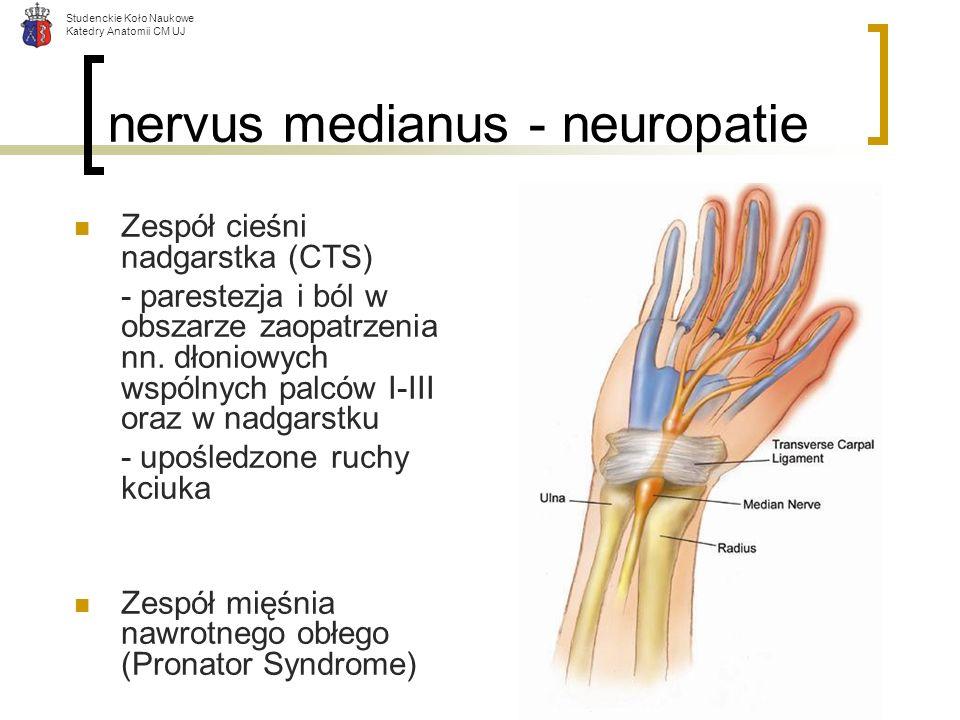 nervus medianus - neuropatie