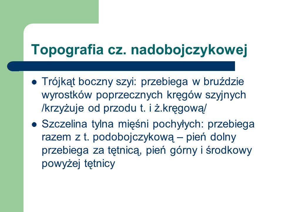Topografia cz. nadobojczykowej