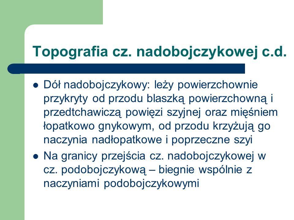 Topografia cz. nadobojczykowej c.d.