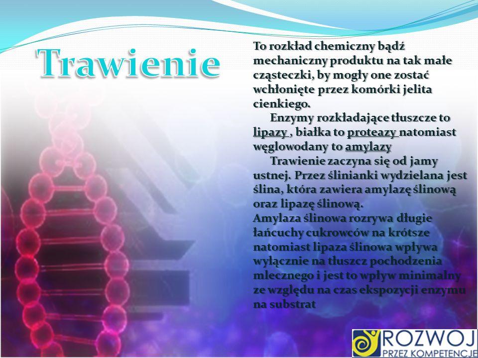 Trawienie To rozkład chemiczny bądź mechaniczny produktu na tak małe cząsteczki, by mogły one zostać wchłonięte przez komórki jelita cienkiego.