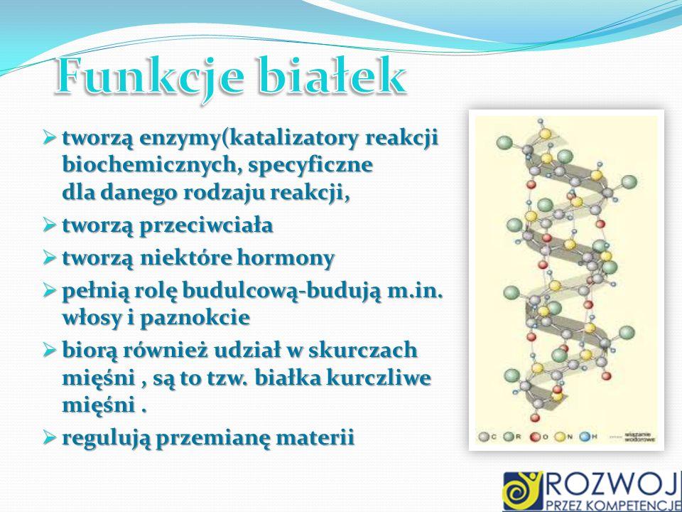 Funkcje białek tworzą enzymy(katalizatory reakcji biochemicznych, specyficzne dla danego rodzaju reakcji,