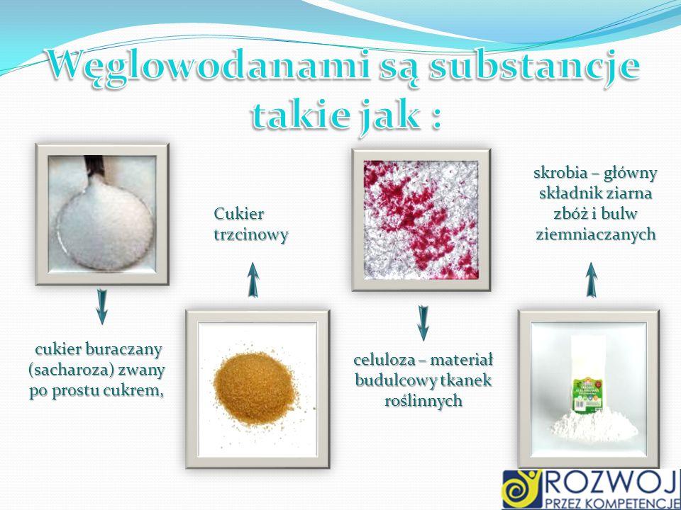 Węglowodanami są substancje