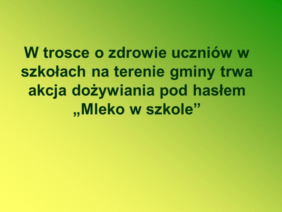 """W trosce o zdrowie uczniów w szkołach na terenie gminy trwa akcja dożywiania pod hasłem """"Mleko w szkole"""