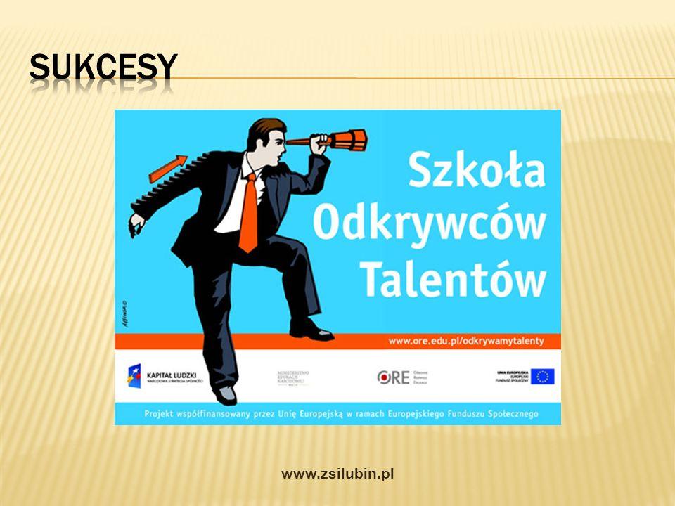 Sukcesy www.zsilubin.pl