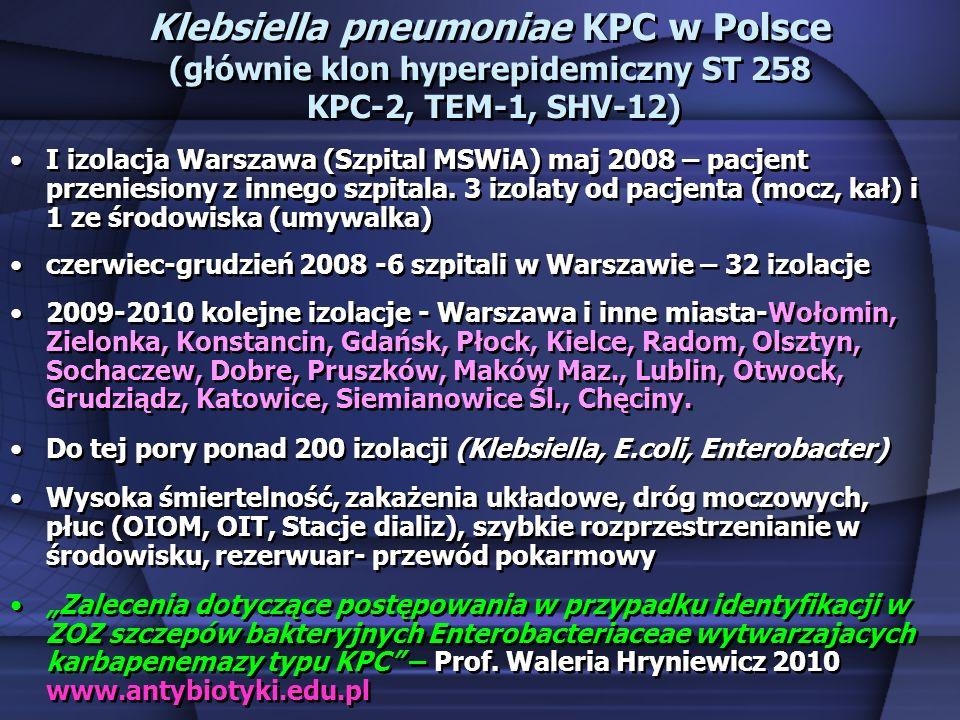 Klebsiella pneumoniae KPC w Polsce (głównie klon hyperepidemiczny ST 258 KPC-2, TEM-1, SHV-12)