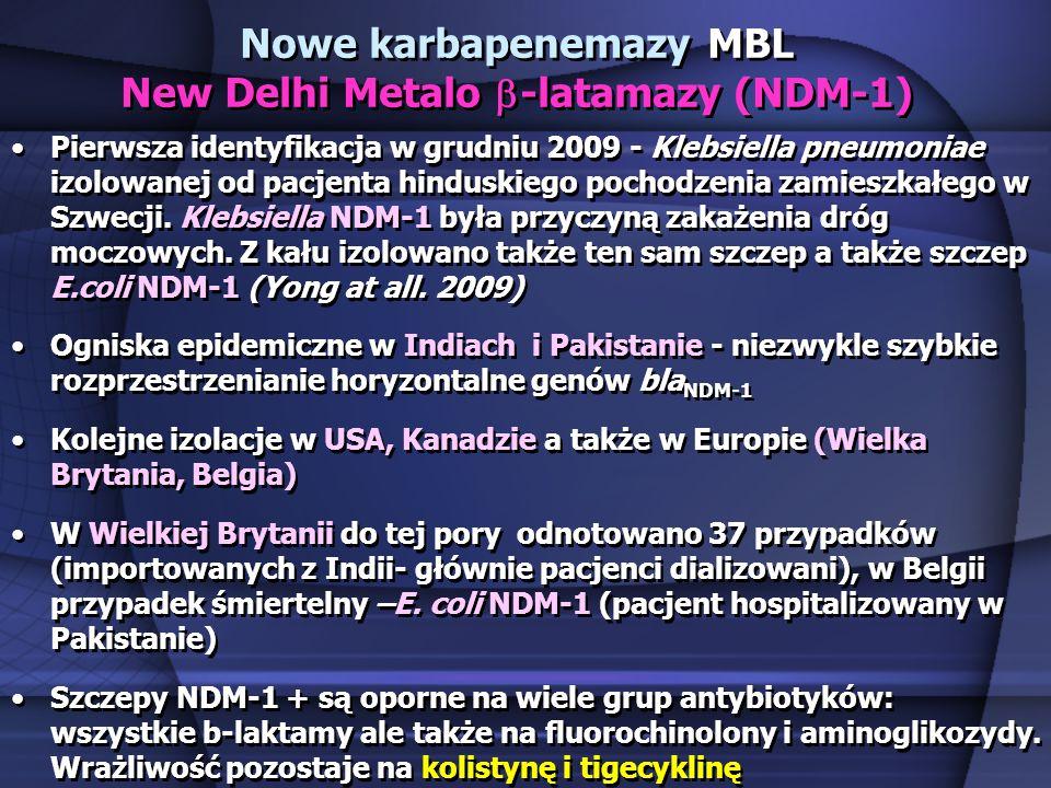 Nowe karbapenemazy MBL New Delhi Metalo b-latamazy (NDM-1)