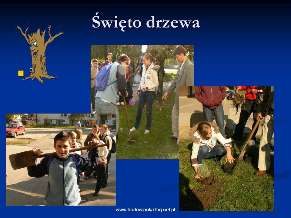 Święto drzewa 5 www.budowlanka.tbg.net.pl