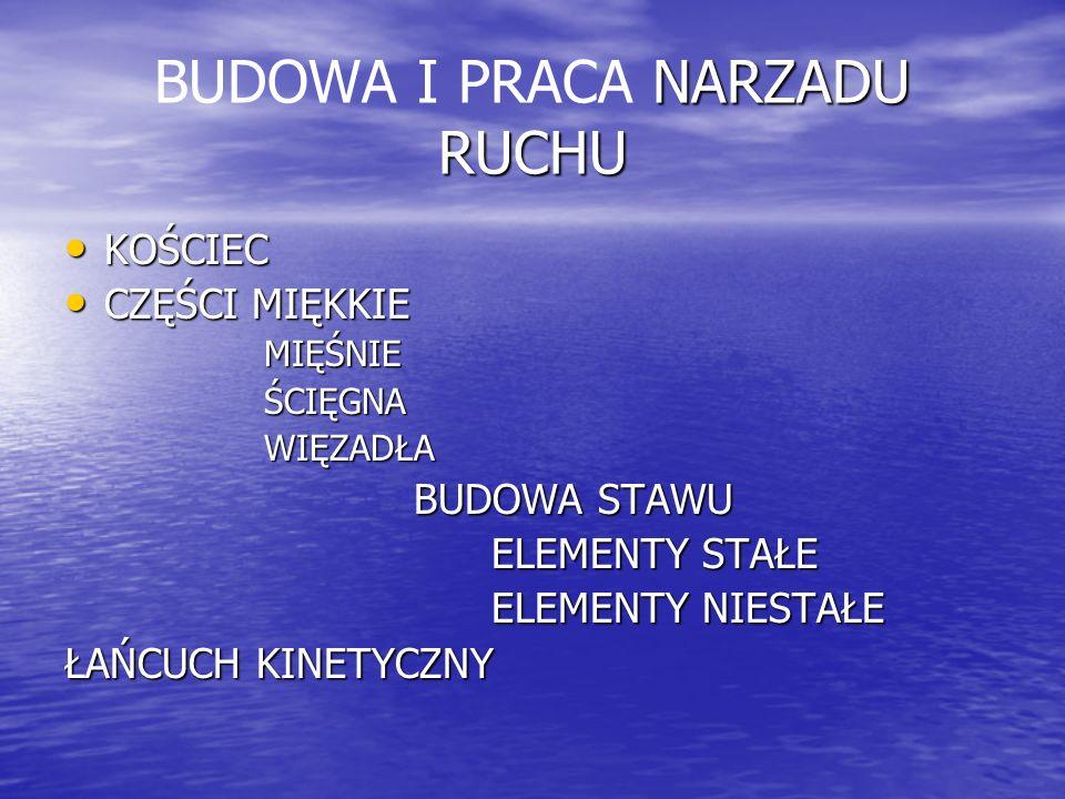 BUDOWA I PRACA NARZADU RUCHU