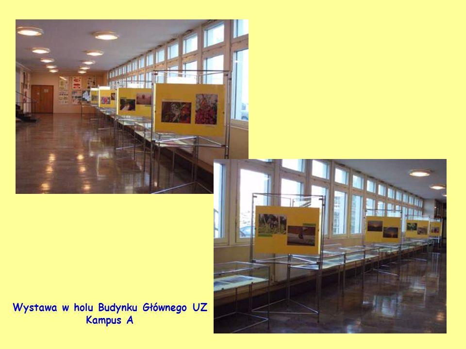 Wystawa w holu Budynku Głównego UZ