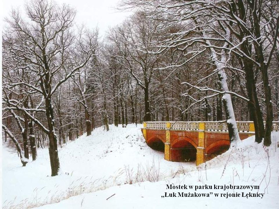Mostek w parku krajobrazowym