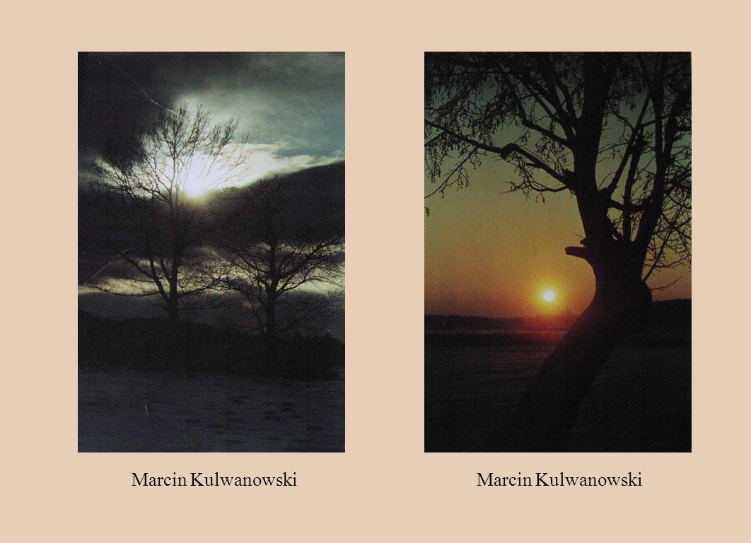 Marcin Kulwanowski Marcin Kulwanowski