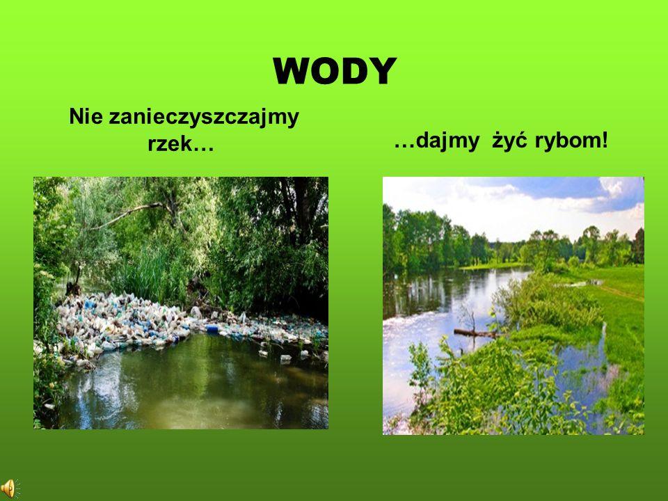 Nie zanieczyszczajmy rzek…