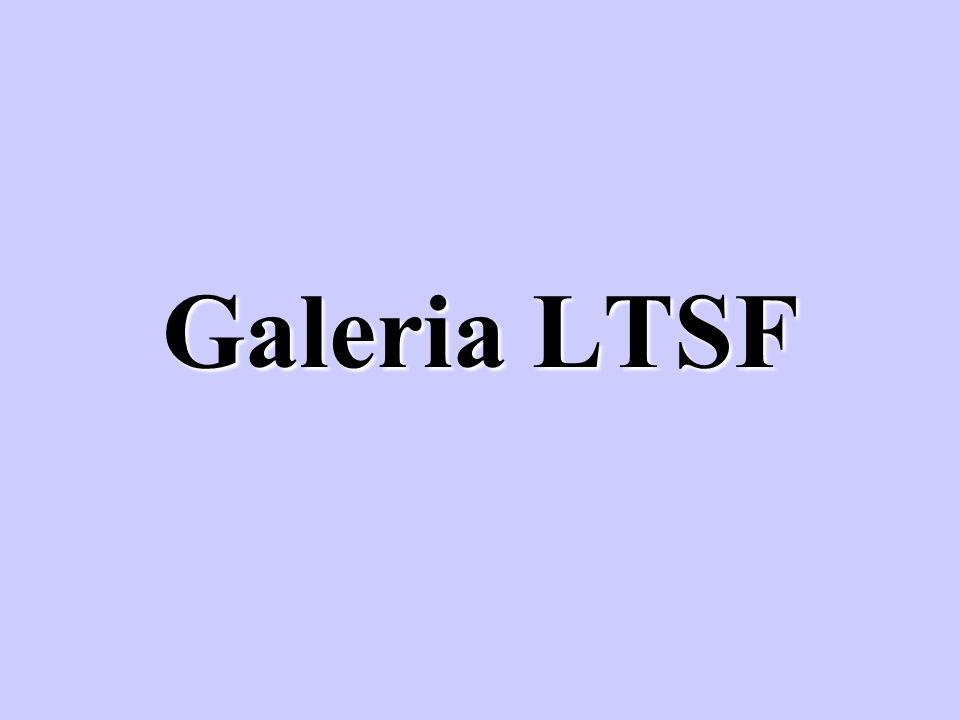 Galeria LTSF