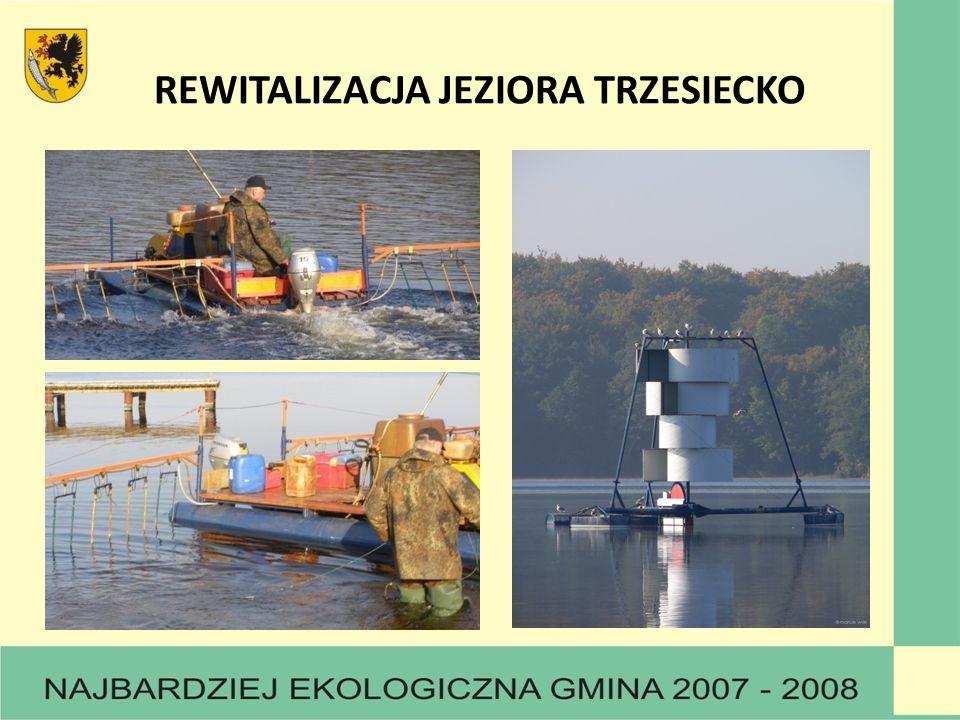 REWITALIZACJA JEZIORA TRZESIECKO